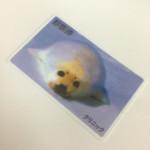 写真や画像を印刷したカードで印象&訴求力アップ